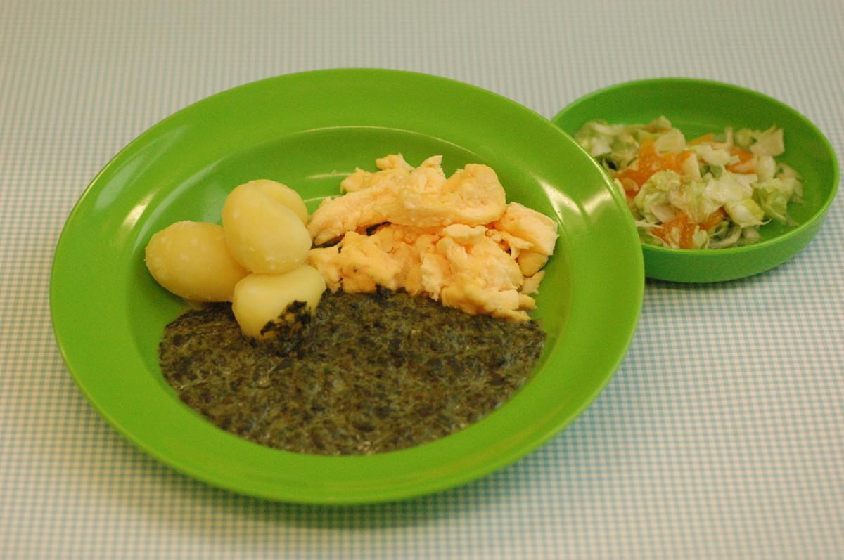 Rahmspinat mit Rührei und Kartoffeln, dazu Chinakohlsalat mit Mandarinen